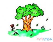怎么绘画大树简笔画步骤涂色简单好看