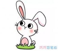中秋节玉兔简笔画画法步骤教程涂颜色