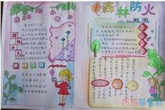 消防小知识森林防火的手抄报简笔画简单漂亮获奖小学生