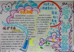 关于保护牙呲爱牙手抄报怎么画简单又漂亮小学生