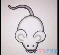 简单小老鼠的画法简笔画视频教程