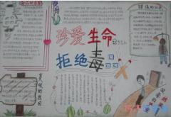 小学生关于珍爱生命拒绝毒品的手抄报怎么画简单漂亮