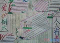 小学生关于爱护树木爱护绿色的手抄报的画法简单漂亮
