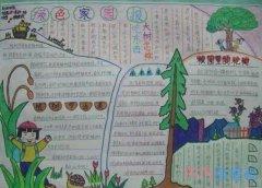 小学生关于绿色家园的手抄报的画法简单漂亮