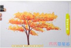 教你怎么画枫树简笔画步骤教程涂颜色
