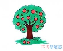 教你怎么画苹果树简笔画步骤教程涂色