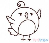 教你怎么画小鸟简笔画教程简单可爱