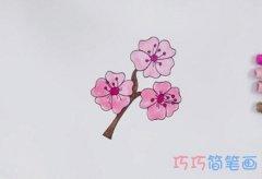 手绘樱花简笔画怎么画涂色简单漂亮