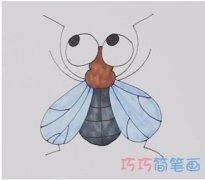 怎么画卡通苍蝇简笔画步骤教程涂色简单