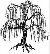 春天的垂柳树简笔画怎么画素描简单漂亮
