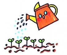 给树苗浇水简笔画怎么画步骤教程涂颜色