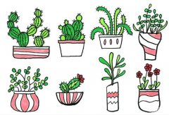 一盆一盆的盆栽植物简笔画怎么画画法步骤教程涂颜色