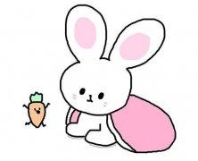 小白兔简笔画怎么画简单好看涂颜色 萌萌哒小兔子简笔画图片
