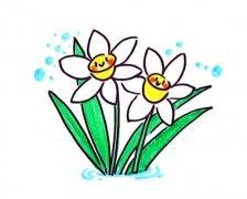 怎么画漂亮水仙花简笔画画法步骤教程简单好看