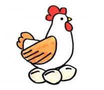 教你画母鸡下蛋简笔画画法步骤教程简单好看 母鸡的简笔画图片