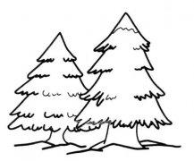 松树简笔画图片 简单松树的画法图解教程