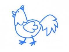 一步一步绘画大公鸡 简笔画简单漂亮