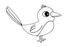 喜鹊的画法步骤教程简单 喜鹊简笔画图片