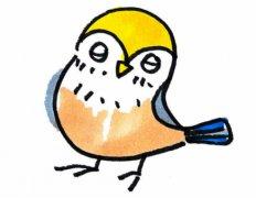 简单小鸟的画法步骤涂色 小鸟简笔画图片