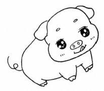 卡通小猪怎么画简单可爱 小猪简笔画