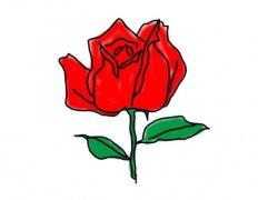 玫瑰花的画法步骤图简单又漂亮