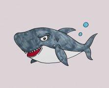 卡通大鲨鱼怎么画涂色简单又好看