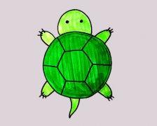 卡通小乌龟怎么画涂颜色带步骤图