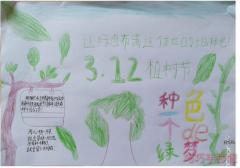 3.12植树节手抄报内容与图片四年级获奖手抄报