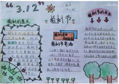 怎么画简单又漂亮3.12植树节手抄报初中生获奖设计图